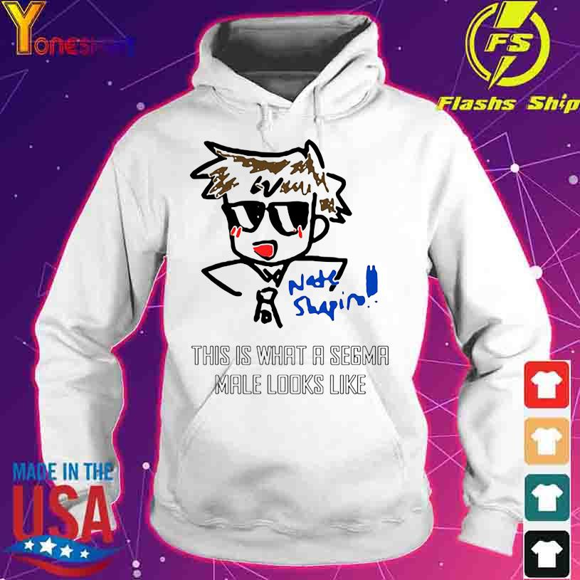 Nate Shapin this is what a Sigma male looks like s hoodie